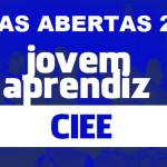 Jovem Aprendiz CIEE 2020: Inscrições, VAGAS ABERTAS CIEE